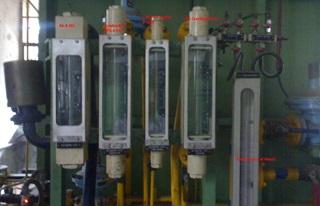 Endo Gas Generation Application